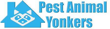 Yonkers Wildlife and Animal Removal